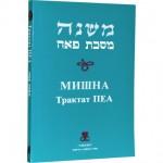 Мишна. Трактат Пеа (Пинхас Кегати)