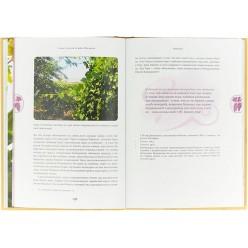 Семь плодов земли Израиля, их духовные и целебные свойства (Хана-Браха Сигельбаум)